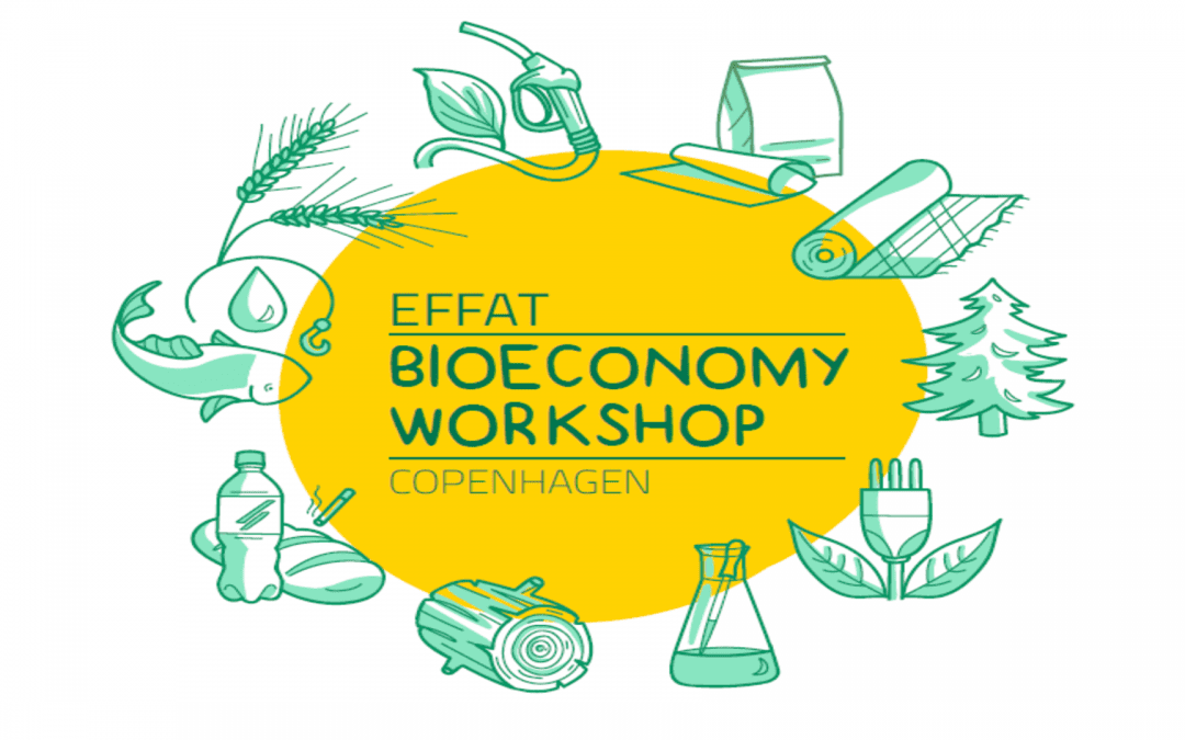 The bioeconomy and a future biobased food industry and agriculture sector –What role for workers?